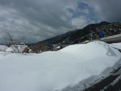 2011年企画展初日雪 009.JPG