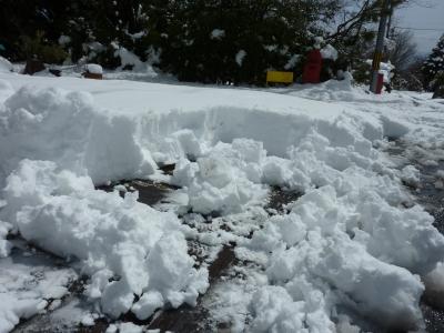2011年企画展初日雪 024.JPG