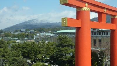 2011年3月26日 岡崎 009.JPG