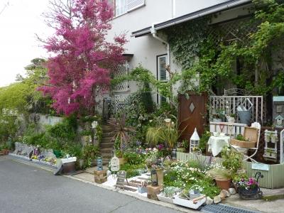 2011年宝塚オープンガーデン 037.JPG