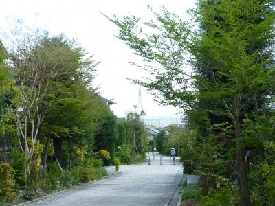 2011年宝塚オープンガーデン 053.JPG