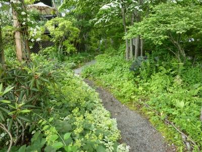 2011年山中湖 静岡 179.JPG